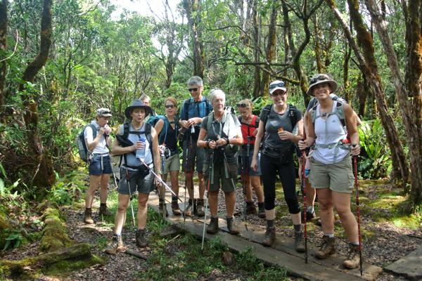 Waimea Alakai Swamp Trail Kauai Hike