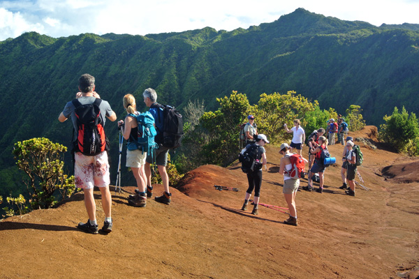Kauai Hike Uplands Volcano Mountain Forest Trek with View of Kalalau Valley