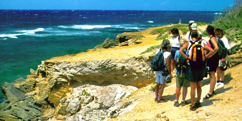 Mahaulepu Coast Nature Walk