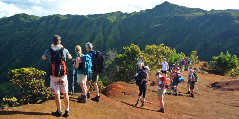 Uplands Volcano Mountain Forest Trek